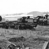 Logging locos, East Texas