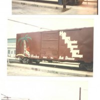 "The ""Real"" Herbie boxcar."